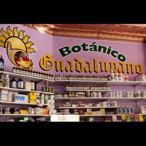 Inside Centro Botanico Guadalupano